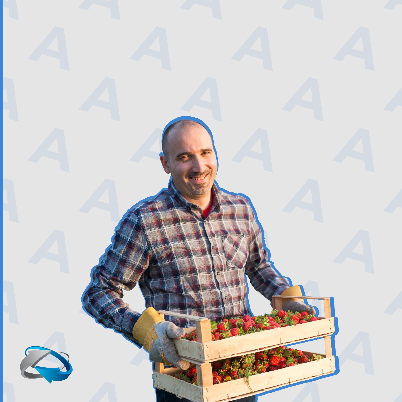 logística no agronegócio - agileprocess - logistica
