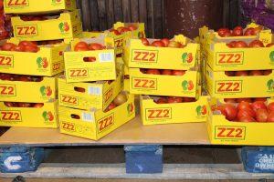 logística-reversa-de-alimentos-embalagens
